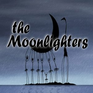 Stone Toad Unplugged - The Moonlighters